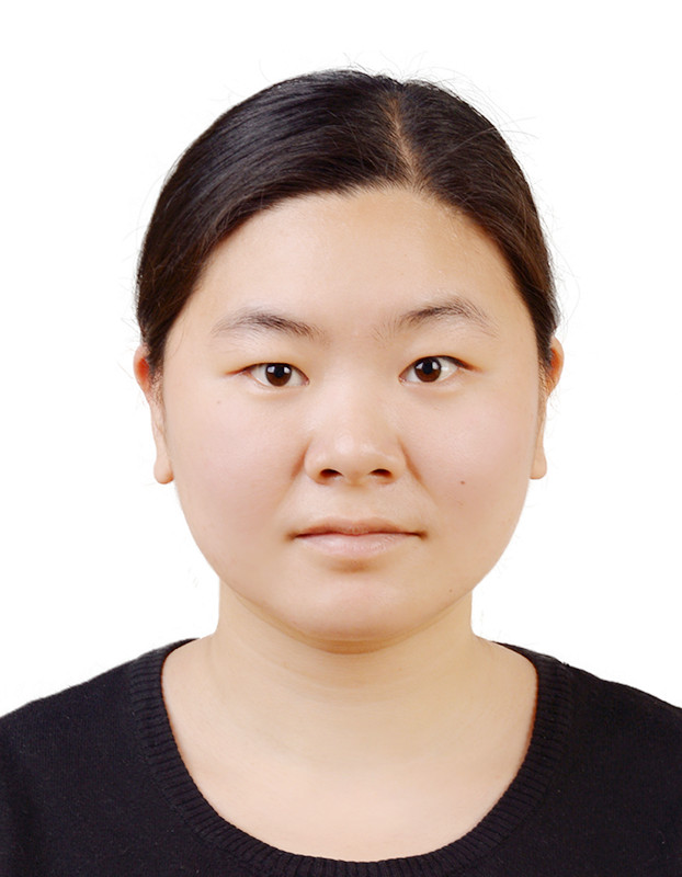 Xinrui Zhang : Guest researcher - Computer-assisted Image-based Interventions